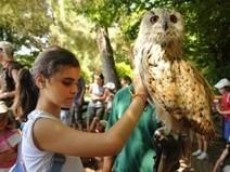 Cerca de 65 niños participan en el campamento de integración | Integración Cultural | Scoop.it