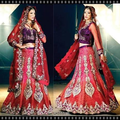 Shinning Shimmering Designer Sarees with Designer Border | CHICS & FASHION | Scoop.it