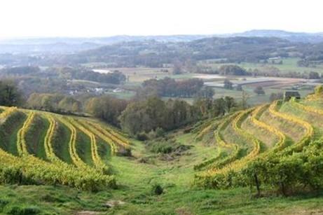 Le vin de Corrèze bientôt protégé par une AOC | Le vin quotidien | Scoop.it