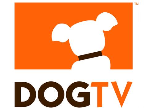 Aux Etats-Unis, un chien pourra bientôt changer de chaîne | DocPresseESJ | Scoop.it