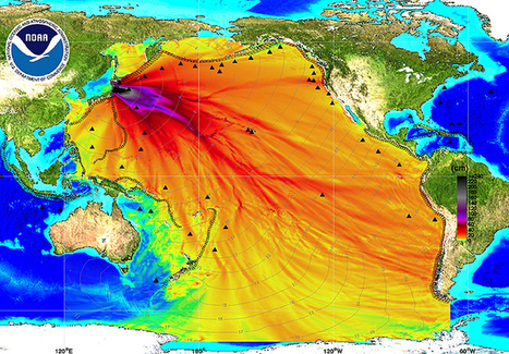 Fukushima Radiation Has Contaminated The Entire Pacific Ocean (And It's Going To Get Worse)  | Japan Tsunami | Scoop.it