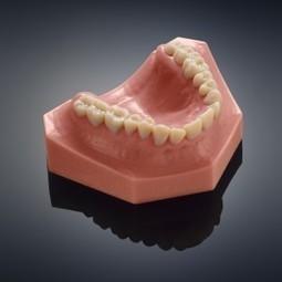The Objet 260 Dental Selection Printer - 3D Printing Industry   Longevity science   Scoop.it