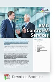 BMC Control-M Services - Enterprise Application Integration and job scheduling | vmware hybrid cloud services | Scoop.it
