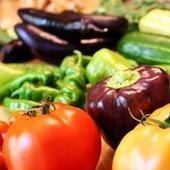 The Benefits of Growing Your Own Food | Shrewd Foods | Scoop.it