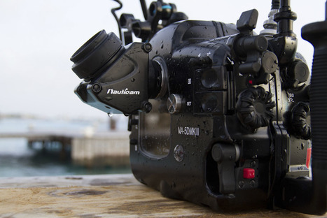 Nauticam NA-5DMKIII underwater housing for Canon 5D Mark III camera | HDSLR | Scoop.it