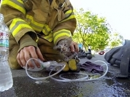Ad of the Day: GoPro's Firefighter Spot Will Leave You Amazed and Weepy | Scott's Linkorama | Scoop.it