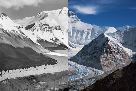 Disappearing glaciers: Now you see them, now you don't | Conservation, Ecology, Environment and Green News | Scoop.it