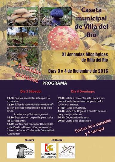 XI Jornadas Micológicas de Villa del Río | Blogs de naturaleza | Scoop.it