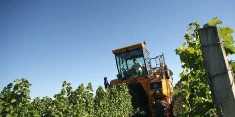 Les viticulteurs du Cognaçais ont fait leur prérentrée | Actualités du Cognac | Scoop.it