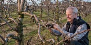 Des paysans 2.0 - RFI | réseaux sociaux et agriculture | Scoop.it