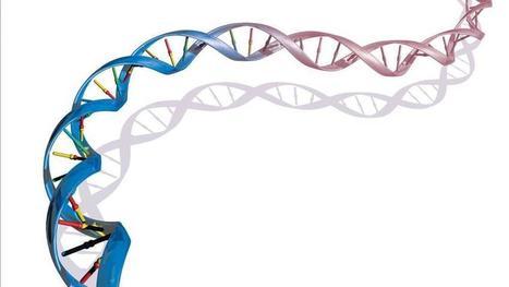 Caccia alle ferite lasciate sul DNA delle donne vittime di violenza | Percorsi meta-narrativi | Scoop.it