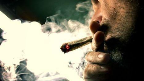 Non, les jeunes Français ne sont pas si nombreux à fumer du cannabis | Marketing, innovation et management - S.Ducroux | Scoop.it