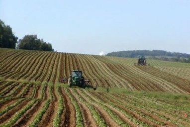 L'Europe à l'assaut des terres agricoles mondiales - et d'Ukraine | Pour une économie solidaire, équitable et durable | Scoop.it