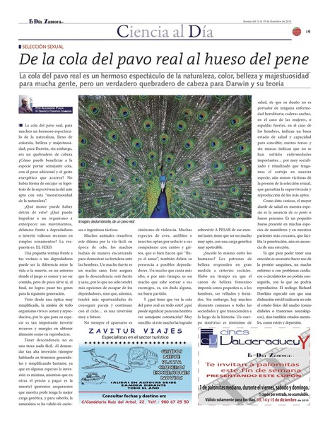 Selección sexual: de la cola del pavo real al hueso del pene | Ciencia | Scoop.it