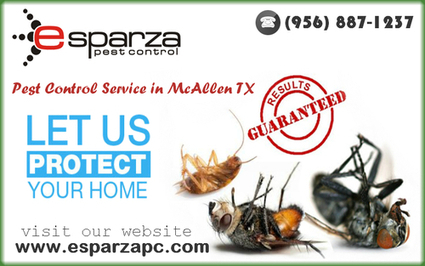 Searching For Pest Control Experts In Mcalle | Esparza Pest Control | Scoop.it