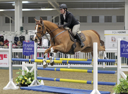 Riders frustrated after further showjumping changes - Horse & Hound | Redwood Ranch Stables | Scoop.it