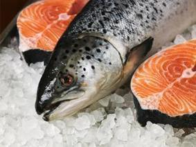Consumer Groups Urge Costco To Publicly Reject GMO Salmon - Aquaculture Directory   Aquaculture Directory   Scoop.it