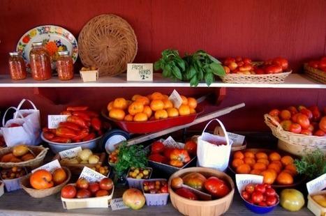 Combien de paysans faut-il près de chez moi si je veux manger local et bio? | Questions de développement ... | Scoop.it