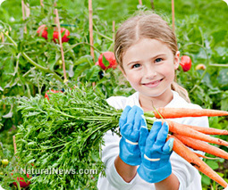 Four-year-old girl living in subsidized housing gets to keep vegetable garden, no thanks to USDA | Social Media, the 21st Century Digital Tool Kit | Scoop.it