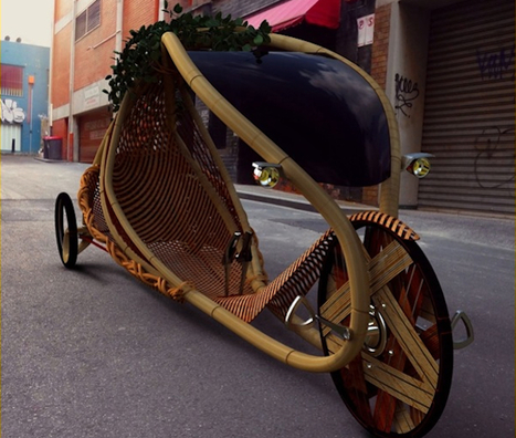 """A Pre-Fab Bamboo Bicycle, Grown From The Ground In Bike Shape 