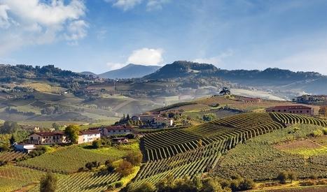 Vignoble de Barolo, Langhe | Route des vins | Scoop.it