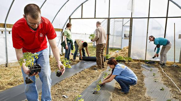 La 3ème révolution alimentaire: vers un âge agro-communautaire