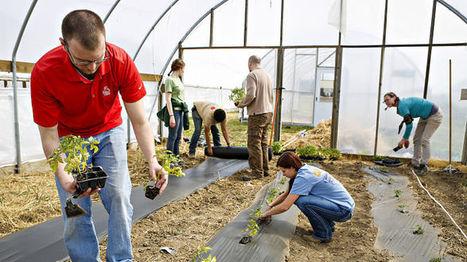 La 3ème révolution alimentaire : vers un âge agro-communautaire | Innovation sociale | Scoop.it