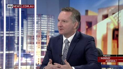 'Parliament should decide marriage equality, people should decide Indigenous constitutional recognition': Chris Bowen | Gay News | Scoop.it