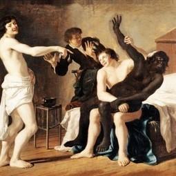 Du viol colonial - Une autre histoire   éco-féminisme sociale   Scoop.it