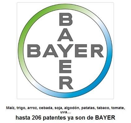 Maíz, trigo, arroz, cebada, soja, algodón, patatas, tabaco, tomate, uva…hasta 206 patentes ya son de BAYER | Patentes | Scoop.it