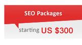 Social Media Optimization Services | Web Design Company Delhi | Scoop.it