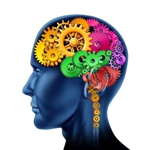 El TDAH como trastorno de las funciones ejecutivas: Aplicaciones para su manejo en el aula | compensatoria | Scoop.it