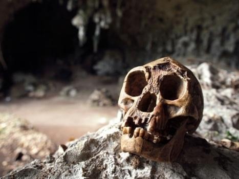 Descubren restos humanos en la cueva del Hombre de Flores | Arqueología, Historia Antigua y Medieval - Archeology, Ancient and Medieval History byTerrae Antiqvae | Scoop.it