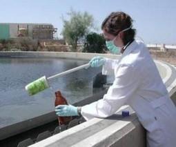 México.- Alerta por baja cloración en agua de consumo humano   Blog del Agua   Agua   Scoop.it