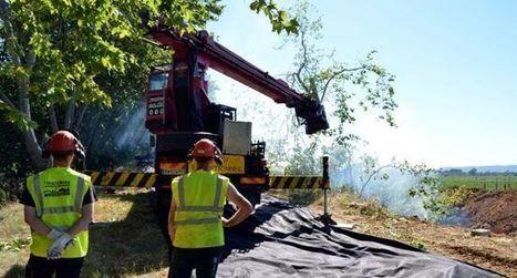 2 200 arbres voués à la mort | Canal du midi (et Cie) | Scoop.it