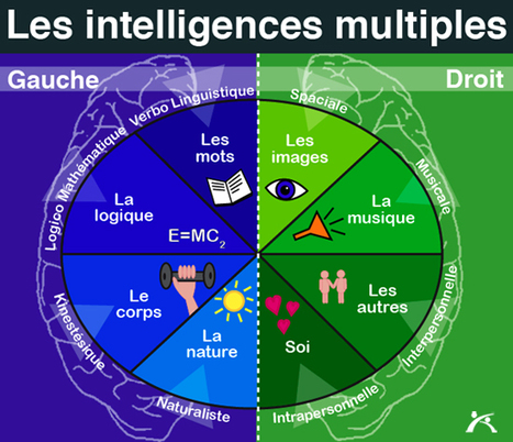 Les intelligences multiples à l'école | A New Society, a new education! | Scoop.it