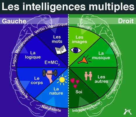 Les intelligences multiples à l'école | Education, web-éducation, réseaux-sociaux | Scoop.it