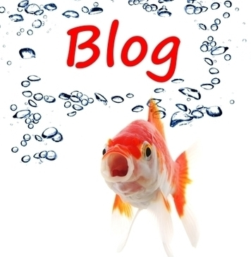 How Can I Make Money Being A Blogger? | Marketing Online | Scoop.it