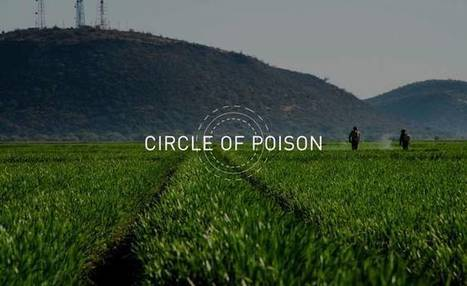 Circle of Poison documentary highlights the deadly impact of the global pesticide industry   Food Security   Scoop.it