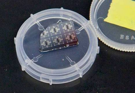 Nickelate Synaptic Transistors Could Improve Parallel Computing | Biomimicry | Scoop.it