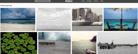 Immagini Gratuite: Pexels | Social Media Curation | Scoop.it