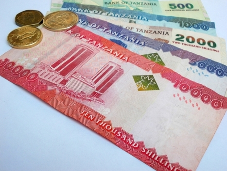 Money Tips for Travel to Tanzania | Safari Junkie | Africa Travel | Scoop.it