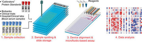 1024 samples analysed on a single chip - Chemistry World   Chemistry   Scoop.it