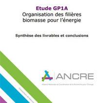 Comment dynamiser les filières biomasse pour l énergie ? | AGROCHAINES | Scoop.it
