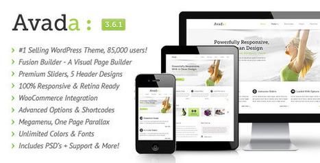 Themeforest et le raz-de-marée des thèmes WordPress bling bling | Duallip into the web | Scoop.it