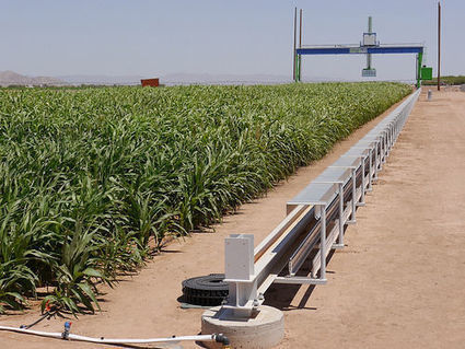 Giant crop scanner turning heads | CALS in the News | Scoop.it