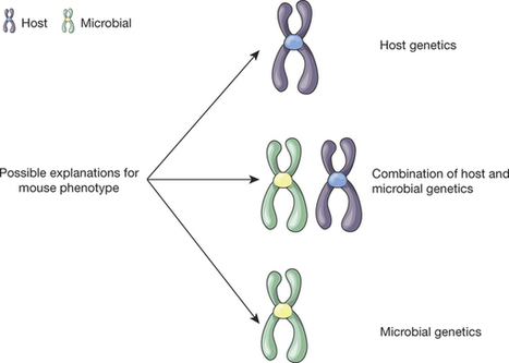 Accounting for reciprocal host–microbiome interactions in experimental science | MycorWeb Plant-Microbe Interactions | Scoop.it