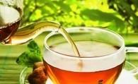 Bonne nouvelle pour les amateurs de thé : Ils sont en meilleur santé ! - La Santé Publique | Actualités du monde du thé | Scoop.it