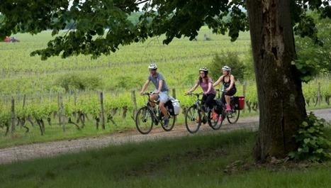 Œnotourisme : Fronton vise le label Vignobles & Découvertes • FlyAndGo   Haute-Garonne tourisme   Scoop.it