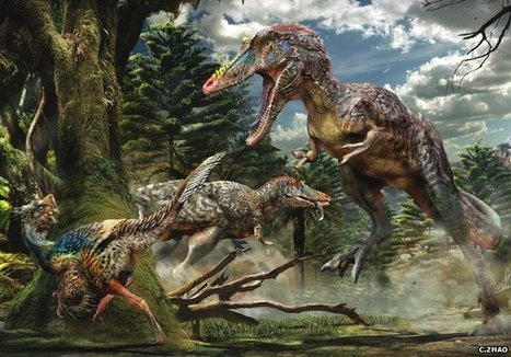 New Tyrannosaur named 'Pinocchio rex' discovered | Amazing Science | Scoop.it